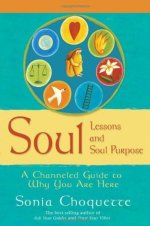 Soul Lessons and Soul Purpose book