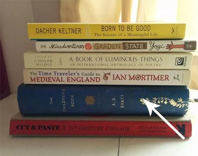 image of booksm on shelf